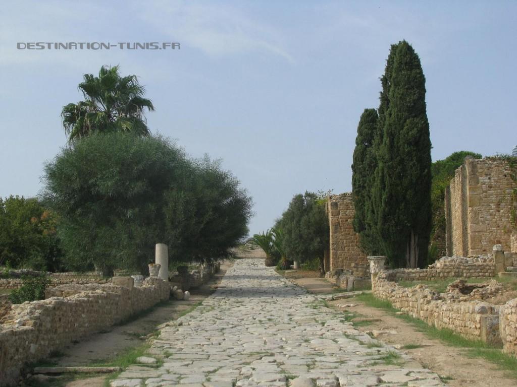 Allée pavée romaine dans les thermes d'Antonin de Carthage