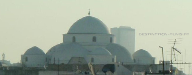 Coupoles de la mosquée Sidi Mehrez.