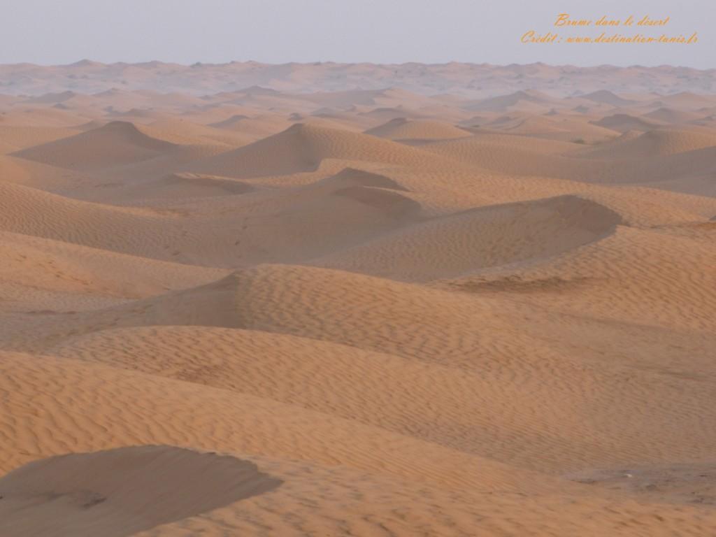 Fond d'écran Désert Brume dans le désert Tunisie