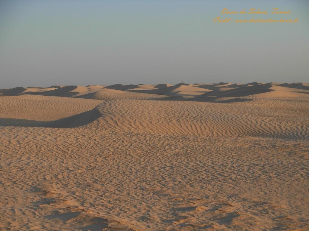 Fond d'écran Désert Dunes du Sahara Tunisie