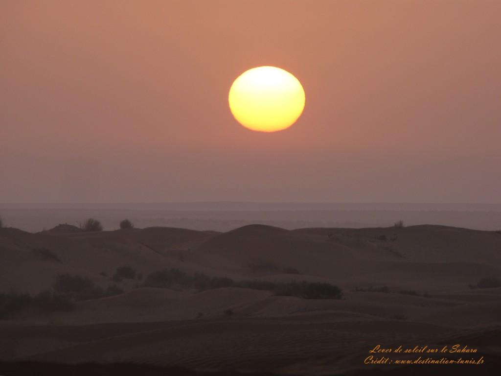 Fond d'écran Désert Lever du soleil sur le désert Tunisie