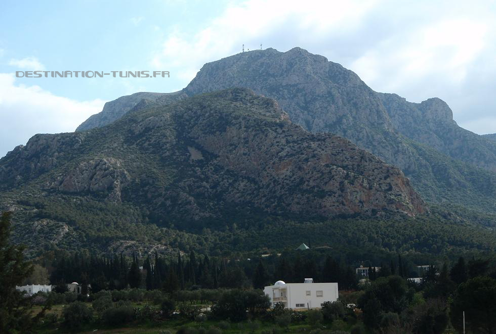 Village de Zaghouan, au pied du djebel Zaghouan