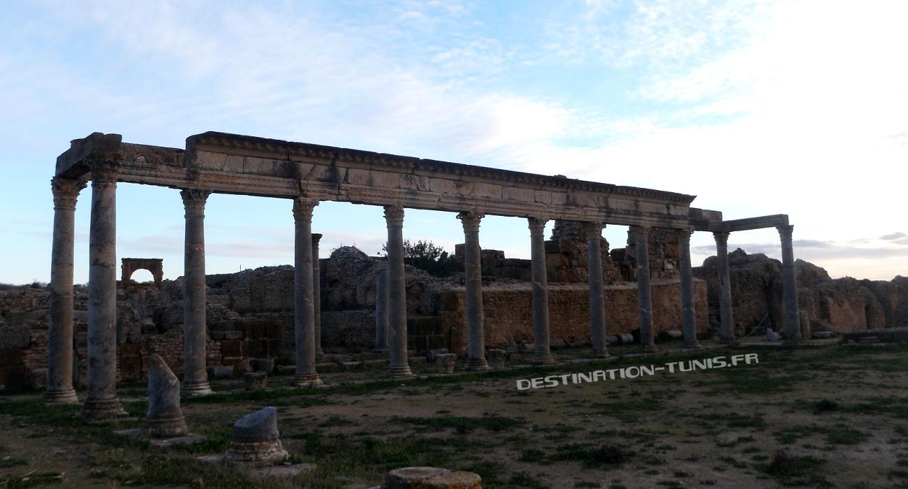 Le majestueux portique du Palestre des Petronii. en arrière plan, l'Arc de Baalat.