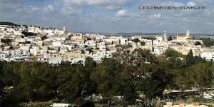 Panorama sur la médina de Zaghouan