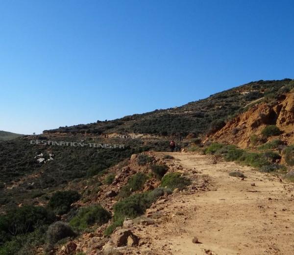La montée est facile par cette belle piste!