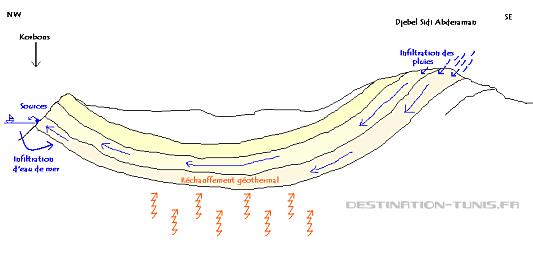 Schéma présentant les plissements géologiques à l'origine des sources chaudes de Korbous