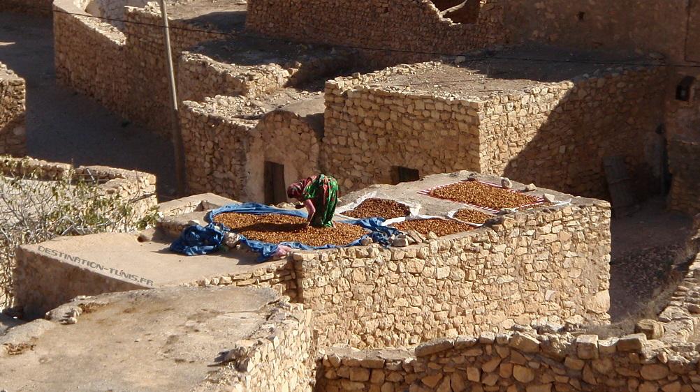 Séchage des dattes et des figues sur les toits de Toujane, dans le sud tunisien.