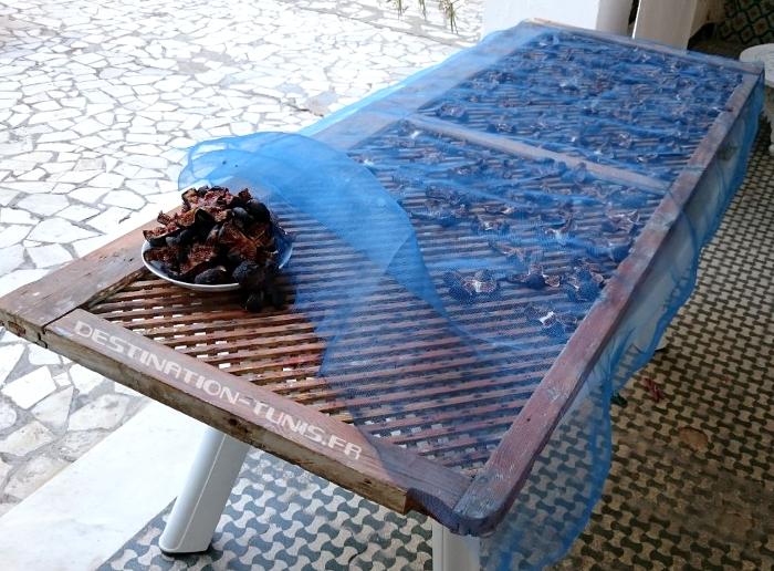 Les figues en fin de séchage sous la moustiquaire