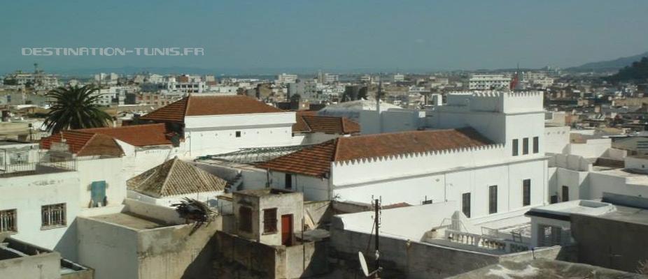 Vue sur les toits du Dar Hassine depuis la terrasse du Dar Bel-Cadi