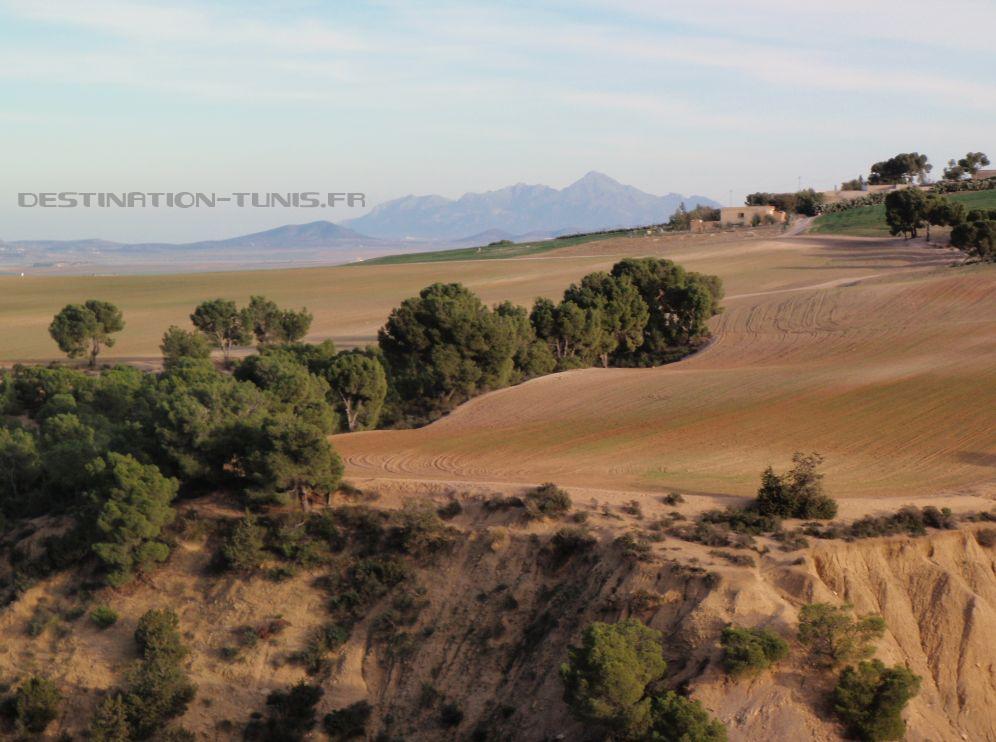 Belle vue sur le djebel Zaghouan depuis les hauteurs de l'oued.
