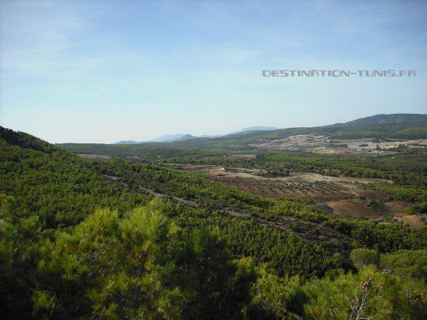 La vue se dégage vers les espaces cultivés de la région
