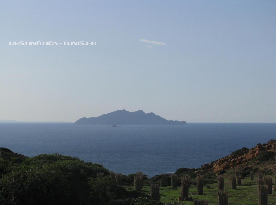 Zembra, île située au large du Cap Bon