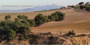 Vue sur Zaghouan Djebel Rihane